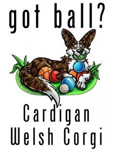 cardigan3