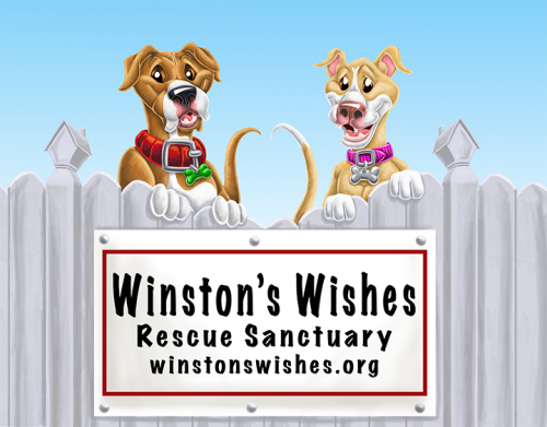 winstons-wishes-logo-final-revised-6-12-2019-low-res